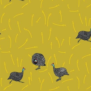 collective: confusion of guinea fowl 1