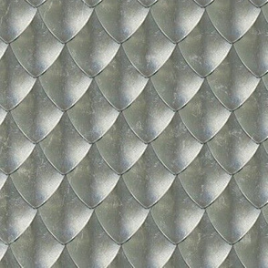 Silver dragon Scales