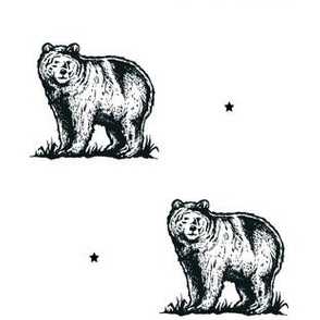 Adventure Bear with Stars in Black & White