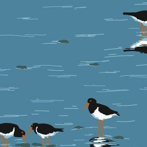collective: parcel of oystercatchers 3