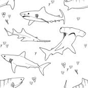 Shark Bite Black and White