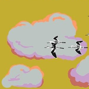 collective: colony of avocets 2 [yarrow]