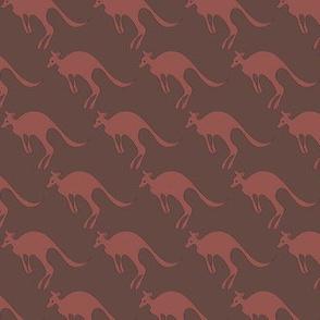 kangaroo_a_bush