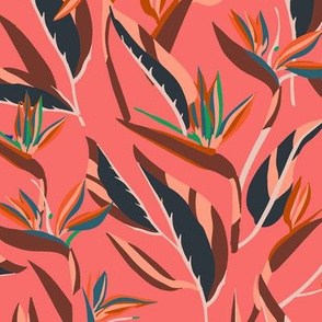 ANTHOLOGY_OF_PATTERN_ELLE_BIRD_OF_PARADISE_BLUSH
