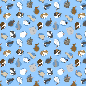 Tiny assorted rabbits - blue