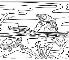 Rrrpillow_case_doodle_turtles_comment_722470_thumb