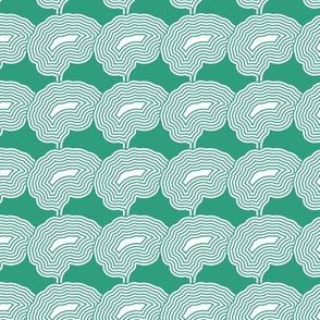 Concentric Brains | Gossamer