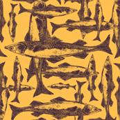 fish-exhibition4