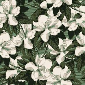Green Magnolia