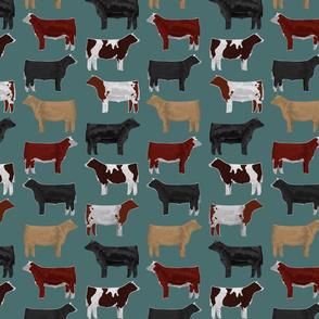 Steer Breeds on Teal
