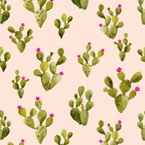 Prickly Pear blush