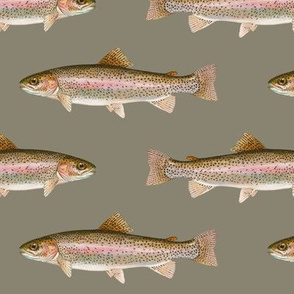 rainbow trout on pewter grey