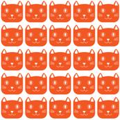 happy cat orange