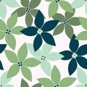 Poinsettias in Green