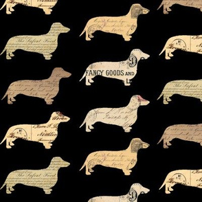 Dachshund Paperback Dogs Black