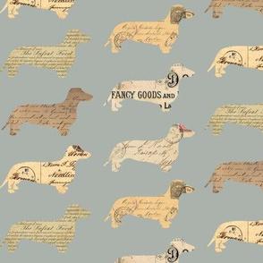 Dachshund Paperback Dogs Grey