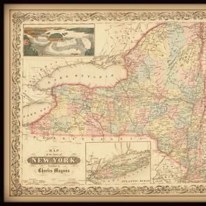 New York state map, yard