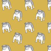 Bulldog mustard