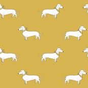 dachshund_mustard