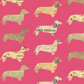 Dachshund Paperback Dogs Pink