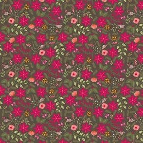 Poinsettia_flower_fond_gris_M
