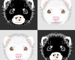 Rblack_and_white_ferret_checkerboard_thumb