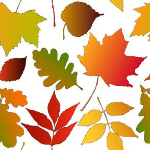 Autumn Jubilee