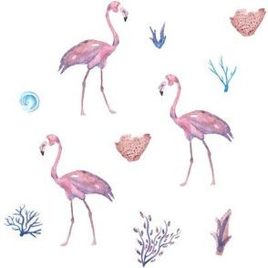 Flamingo Aquatic Pattern