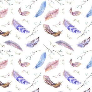 Watercolor feather boho color organic design13