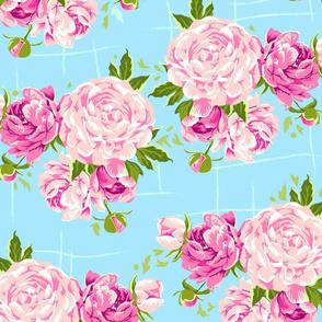 Peonies_blue_background
