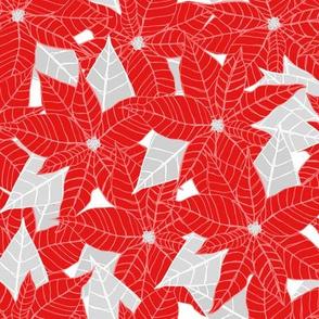 Endless Poinsettias
