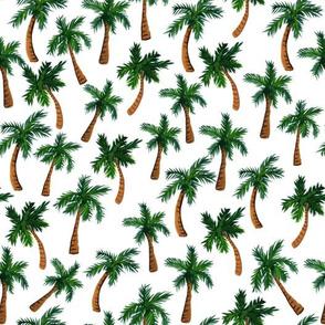 Palm Tree Print (Medium)