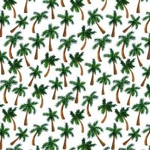 Palm Tree Print (Small)