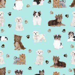 chocolate yorkie, maltese, biewer terriers cute toy dogs fabric cute toy breeds fabric cute dog breed fabric