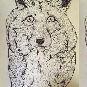 Concerned fox