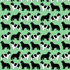 green_newfy_fabric