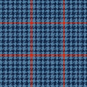 tartan check - northern midwinter