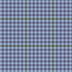 tartan check - autumn blue