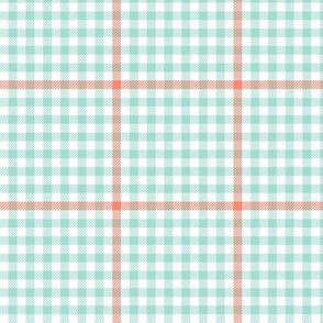 mint and coral tartan check