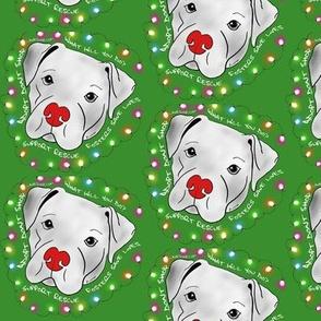 Rescue Pitbull Christmas