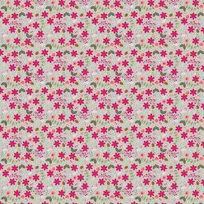 Poinsettia_flower_fond_gris_nuage_S