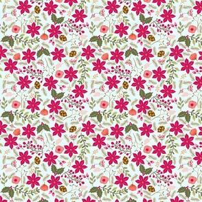 Poinsettia_flower_fond_bleu_M