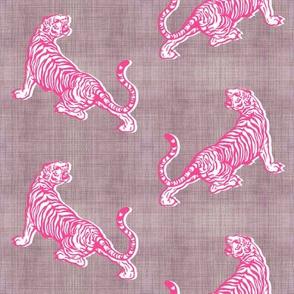 Gray Tigers