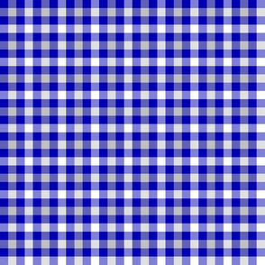 cobalt, silver and white gingham