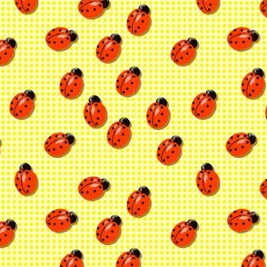 ladybird on Vichy
