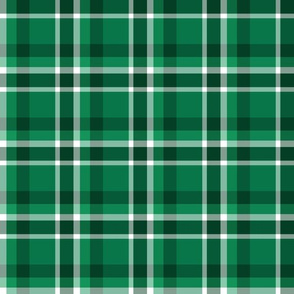 Christmas Green Plaid