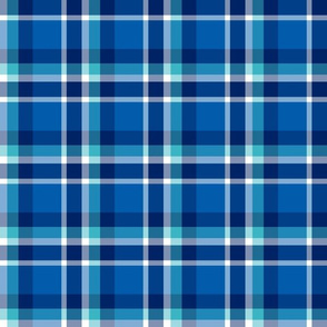 Winter Blue Plaid