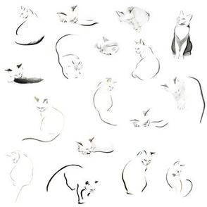 Many minimalist cats