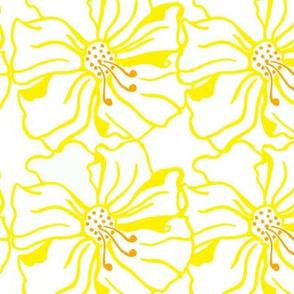 Double_Yellow_Hibiscus