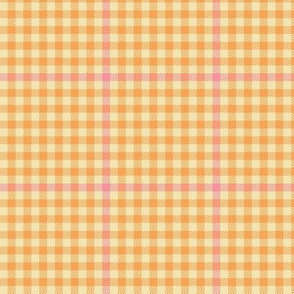 tartan check - tangerine and pink